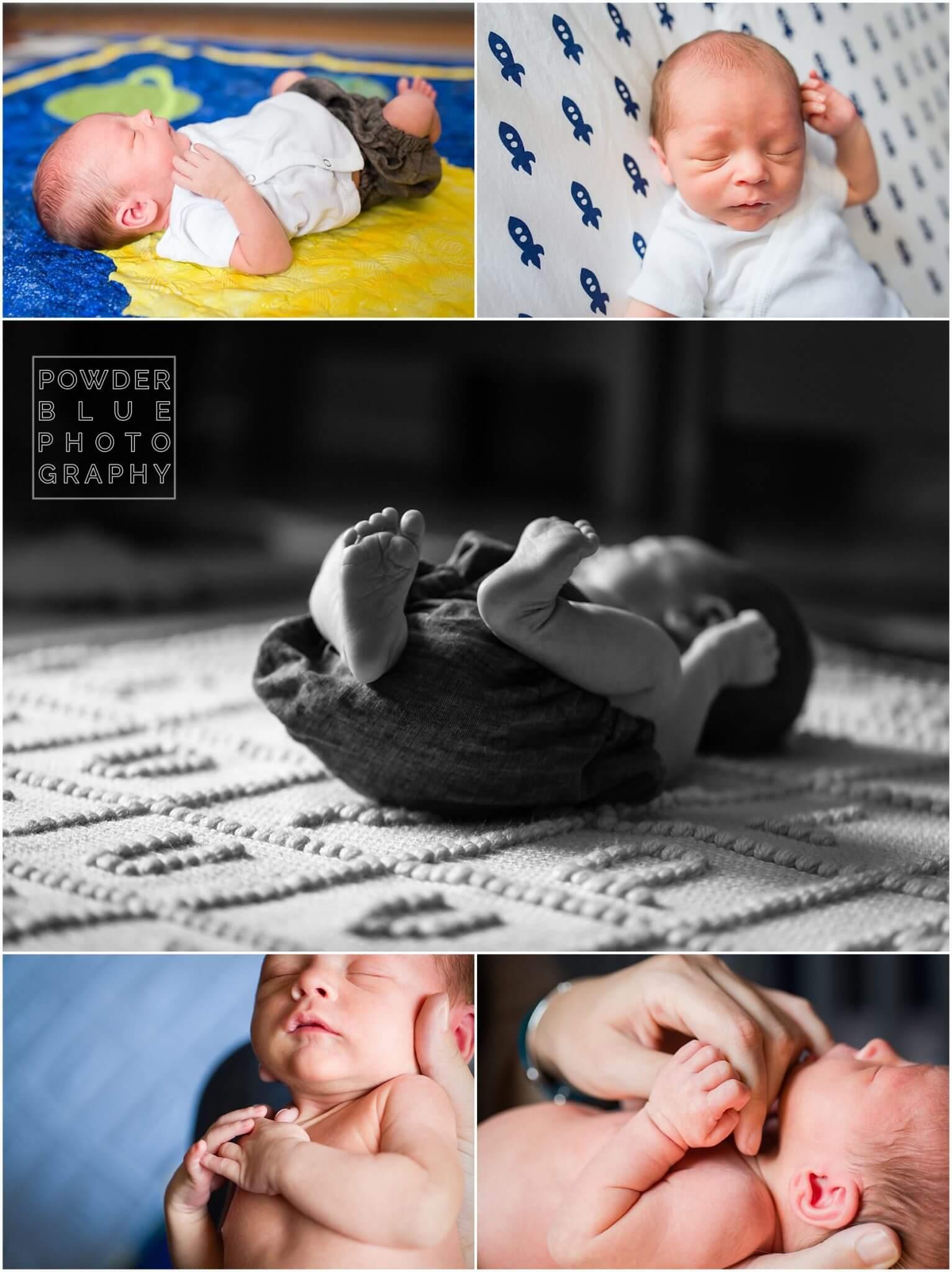 (C) 2015 Powder Blue Photography. www.powderbluephoto.com